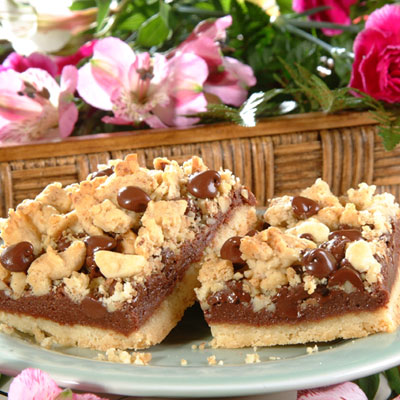 Chocolate Crumb Bars
